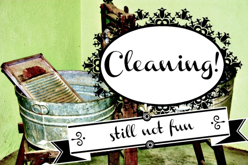 spring, cleaning, washtub, wash