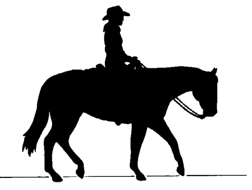 cowboy, horse, clip art, shadow,