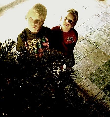 atticus, zane, whit, honea, xmas, christmas, holiday, tree