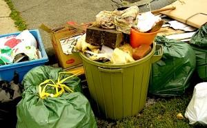 trash, garbage, refuse, junk, hoarding, hoard,